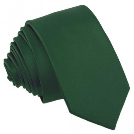 Pánská zelená jednobarevná kravata Roberto Gabbani 99952